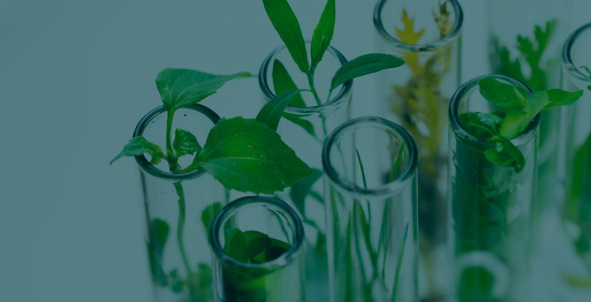 ABG-Biotechnology-life-sciences-TD(1)