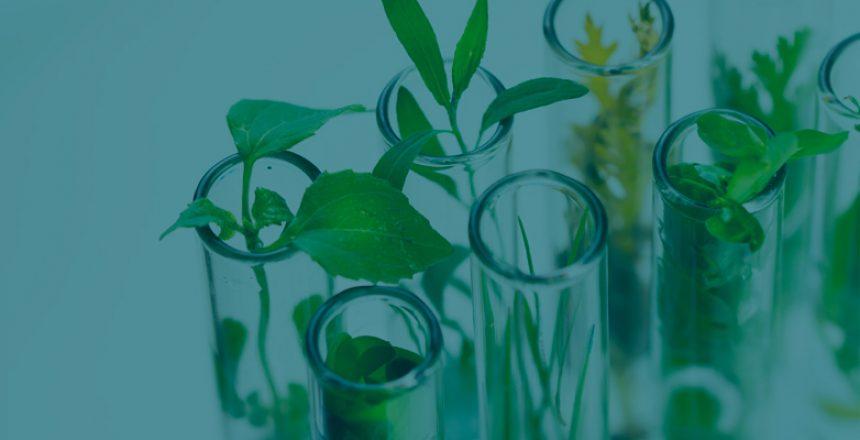 ABG-Biotechnology-life-sciences-TL
